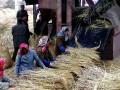 В КНДР снизили продовольственную норму до 300 граммов в день
