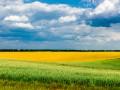 В Украине стартуют аукционы по аренде земли