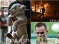 День в фото: Медаль украинского гимнаста, львенок в частном зоопарке и пожары в Португалии
