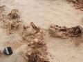 В Перу нашли новое ритуальное захоронение детей