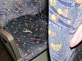 В Житомирской области пьяный угрожал в автобусе муляжом гранаты