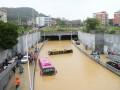Тайфун Матмо уже вырывает деревья в Китае и идет на Россию