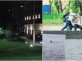 Итоги 8 июня: взрыв на территории посольства США, конфликт Шабунина с блогером и лось в Киеве