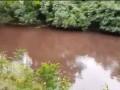 Киевляне встревожены: Пруд на Осокорках стал красного цвета