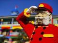 В Калифорнии построили первый в мире Lego-отель