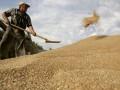 Аграрный фонд выплатил государству дивиденды за 2015 год
