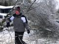Сотни тысяч американцев стались без света после ледяной бури