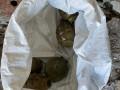 На Донбассе обнаружили тайник с опасными боеприпасами