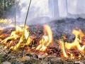 Украиские спасатели предупреждают о чрезвычайном уровне пожарной опасности на выходных