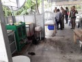 В ресторане Таиланда вегетарианцам подали человеческое мясо