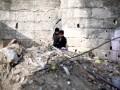 Правозащитники назвали количество погибших в Сирии от авиаударов РФ