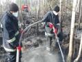 На Луганщине почти сутки горели леса