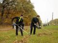 Киевских безработных заставят убирать улицы