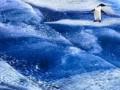 Российское судно терпит бедствие в Антарктике