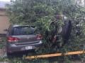 В Канаде 30 человек пострадали из-за торнадо