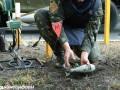 Саперы обезвредили 32 тысячи мин и взрывных устройств в зоне АТО