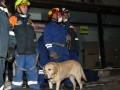 Обрушение в Киеве: в ловушке могут быть еще трое, улица перекрыта