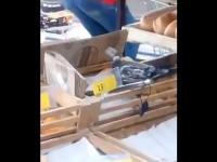 В магазине Киева заметили голубя, поедающего пиццу