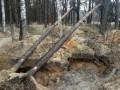 Опубликованы фото последствий добычи янтаря в Ровенской области
