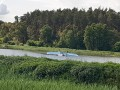 Найден исчезнувший в Киевской области самолет
