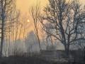 Итоги 13 апреля: Большой обмен пленными и выжженная земля Чернобыля