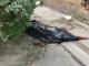 В Киеве пожилая женщина выпала из окна и погибла