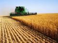 В Раде представили законопроект о рынке земли