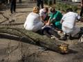 В Днепре упавшая ветка убила студентку