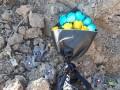 На месте гибели Боинга МАУ появились желто-голубые цветы