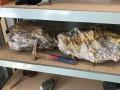 В Австралии обнаружили огромные золотые самородки
