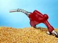 Переведя авто на биотопливо, украинский водитель ощутимо сэкономит - эксперт