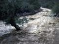 В реках Украины ожидают подъем уровня воды