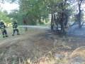 На Луганщине больше 40 пожарных тушат горящий лес