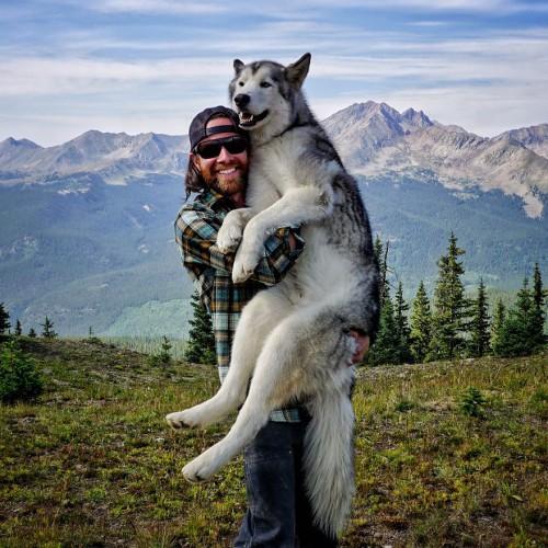 Парень отправился в путешествие с волчьей собакой (22 фото+видео)