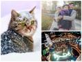 Позитив дня: первый снег, Instagram Кличко и супермама