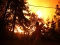 Филиал ада: фото самых масштабных пожаров в истории Чили