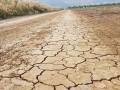 В Израиле из-за засухи рекордный дефицит воды