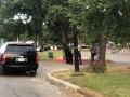 В США при стрельбе в парке ранены пять человек