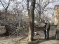 Ураган в Одессе: в центре города на девушку упало дерево, она погибла
