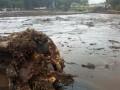 В Кении из-за оползня и наводнений погибли 120 человек