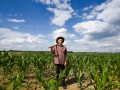 Иностранцам не разрешат покупать землю в Украине