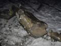 Ленинопад продолжается: Очередного вождя снесли в Запорожье