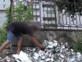 В Днепре на мусорнике нашли сотни коробок чая