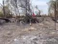 В сети показали, как сейчас выглядит место крушения Ан-26