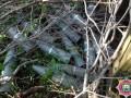 Возле Докучаевска обнаружено более 20 ящиков с боеприпасами