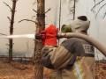 На Житомирщине новый пожар перешел на заповедник