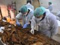 Испанские ученые заявили об обнаружении останков Сервантеса