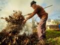 МОЗ предлагает запретить сжигать листья и посыпать дороги солью