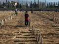 Россия назвала фальшивкой доклад ООН по Сирии