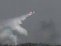 Пожар охватил 20 га леса возле полигона ВСУ под Черниговом